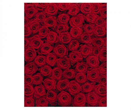 Fototapeta na drzwi Roses 97x270 cm