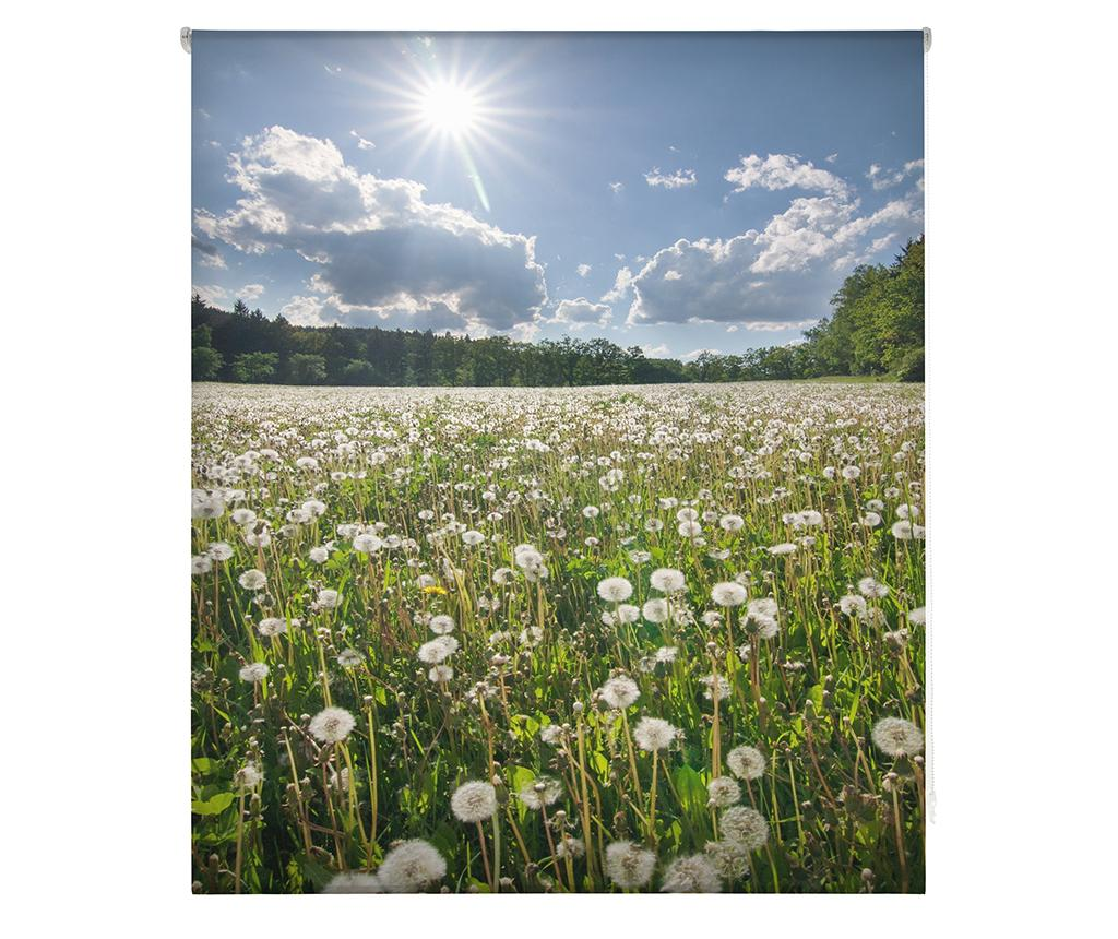 Jaluzea tip rulou Dandelion Field 110x180 cm - Blindecor, Albastru imagine 2021