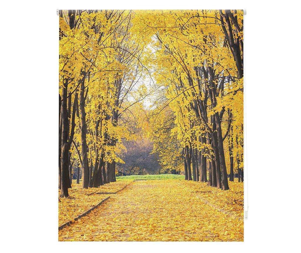 Jaluzea tip rulou Forever Autumn 80x180 cm - Blindecor, Alb
