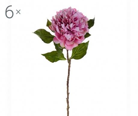 Peony Pink 6 db Művirág