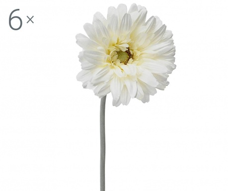 Sada 6 umělých květin Transvaal Daisy Cream