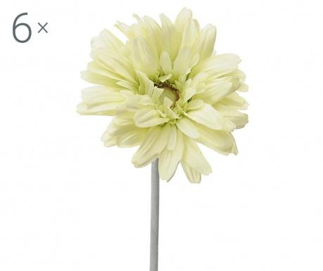 Sada 6 umělých květin Transvaal Daisy Green