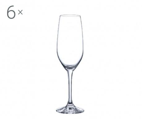 Set 6 pahare pentru vin Rona Yarra Crystalite 205 ml