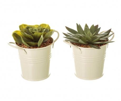 Set 2 plante artificiale in ghiveci Suculent