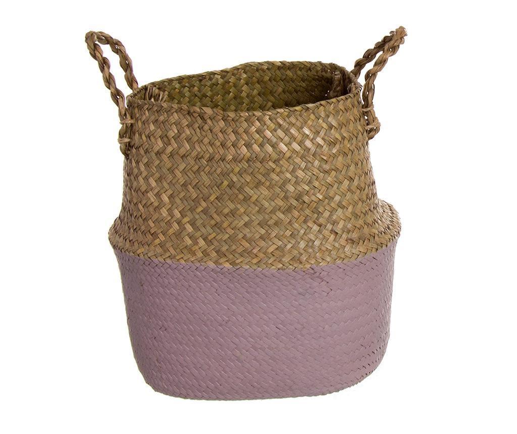Cos Rodondo Purple