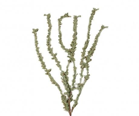 Umelá rastlina Soria
