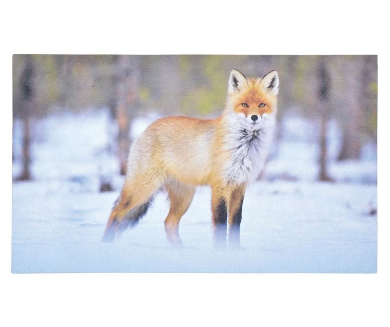 Vchodová rohožka Fox 45.5x76 cm