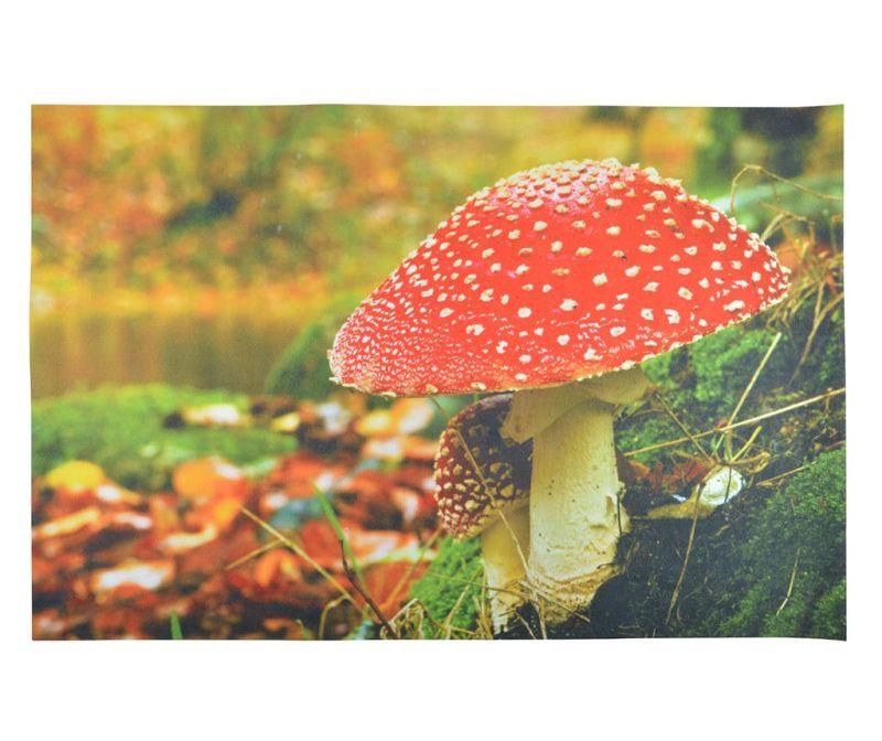 Vchodová rohožka Mushroom 59.5x90.5 cm