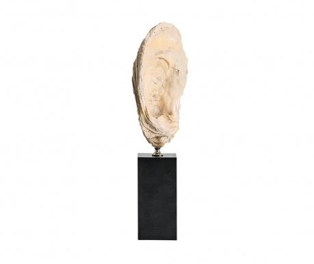 Dekorácia Fossil