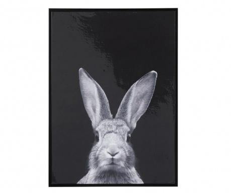 Myron Rabbit Kép 52x72 cm