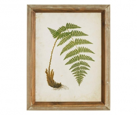 Slika Fern Right 43x55 cm