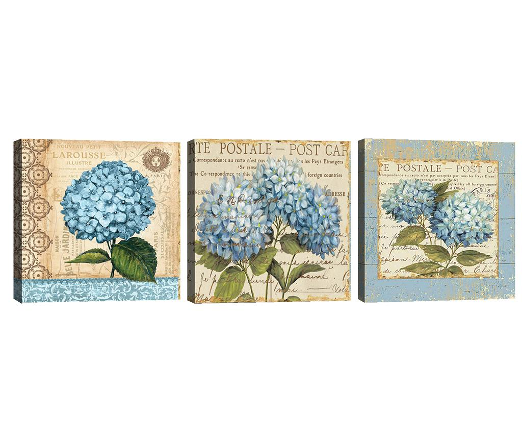 Set 3 tablouri Hydrangea 30x30 cm - Tablo Center, Crem,Albastru