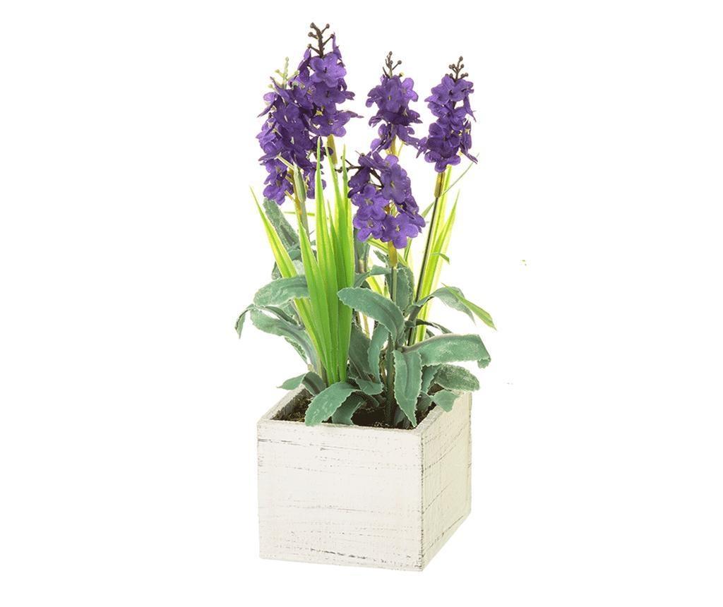 Lavander Square Purple Műnövény virágcserépben