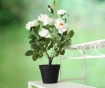 Držač za posude za cvijeće Lili