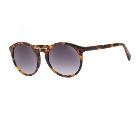 d8ef79065 Pánske slnečné okuliare Just Cavalli Havana Grey - Vivrehome.sk