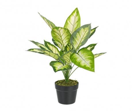 Umjetna biljka u posudi Dieffenbachia