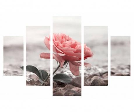 Set 5 tablouri Rose
