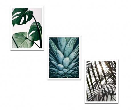 Set 3 tablouri Palms 30x40 cm
