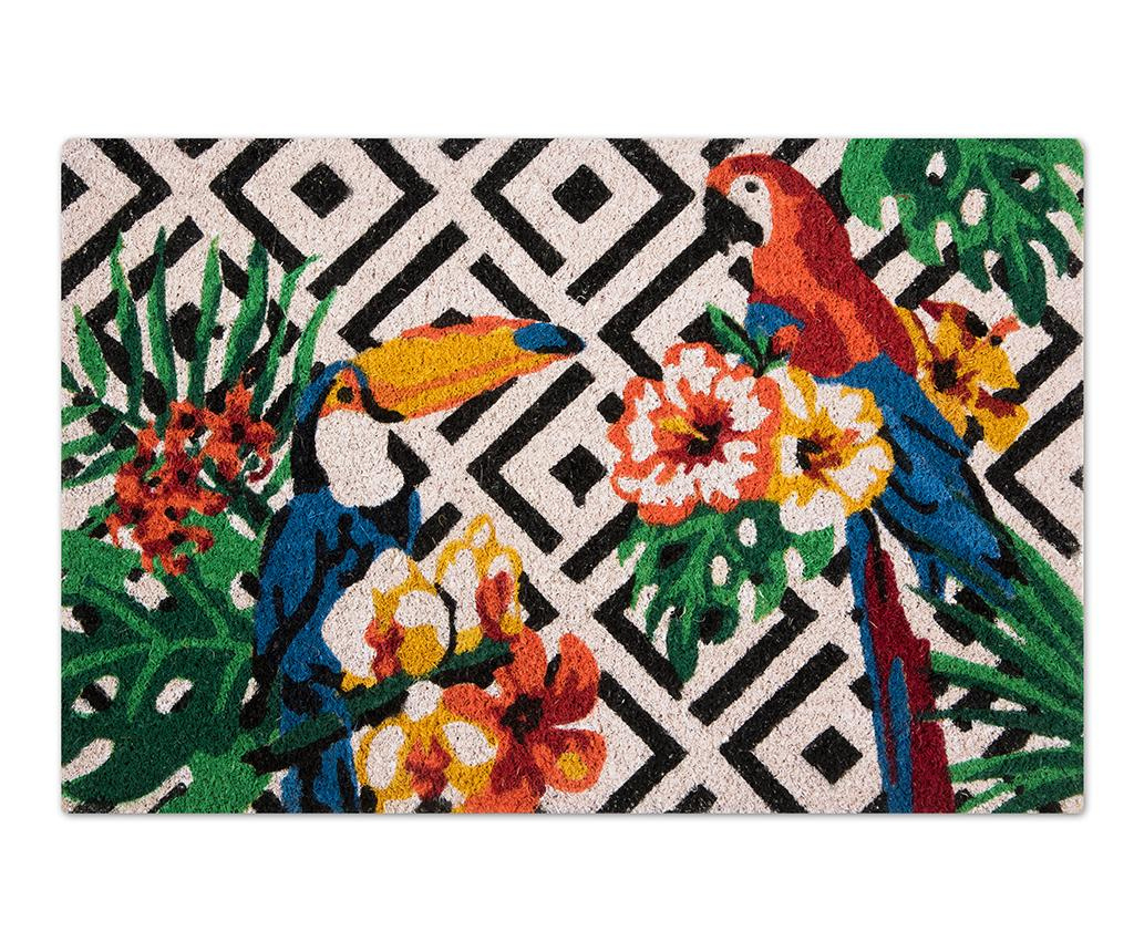 Covoras de intrare Tropical 40x60 cm - Excelsa, Multicolor