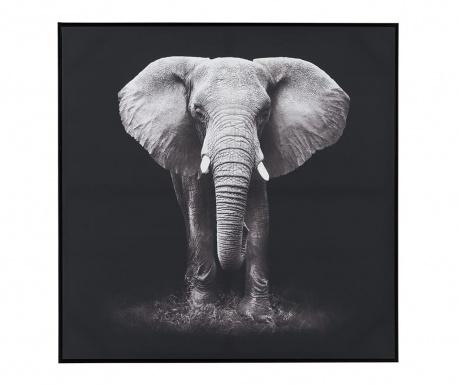 Elephant Kép 102x102 cm
