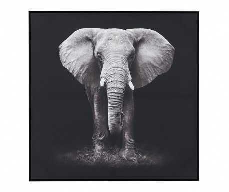 Slika Elephant 102x102 cm