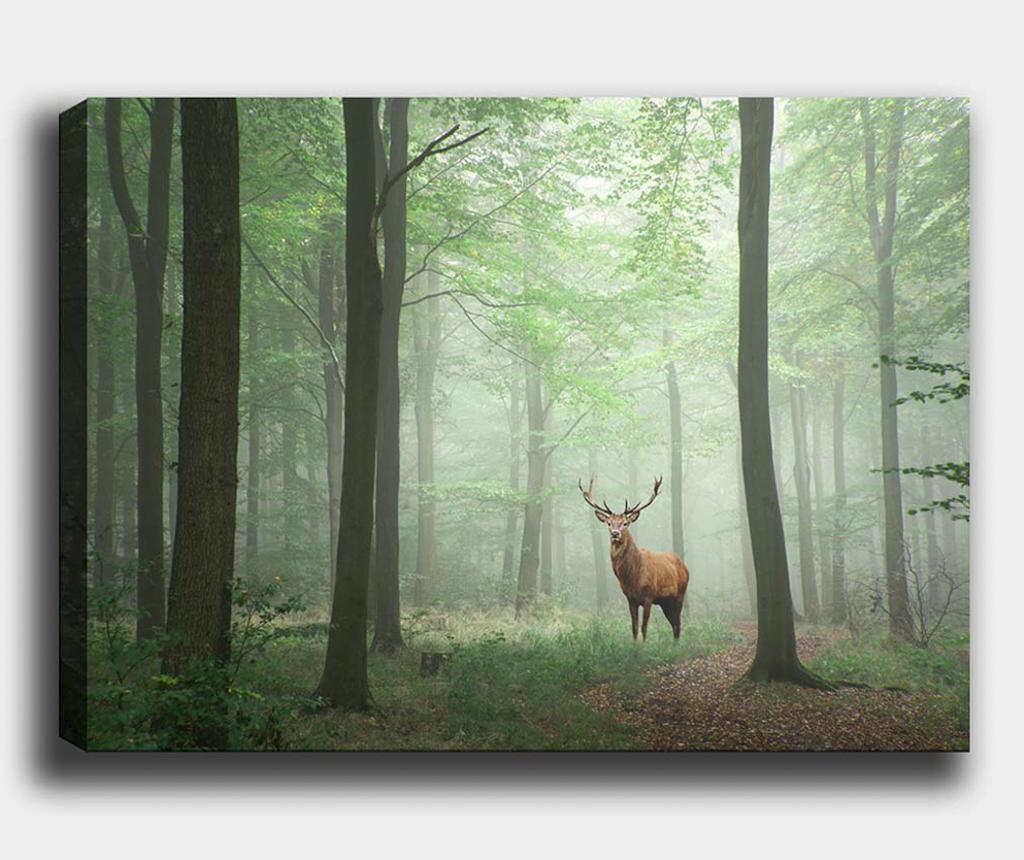Tablou Woods 70x100 cm - Tablo Center, Multicolor
