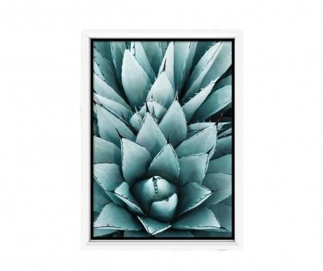 Suculent Kép 23x33 cm