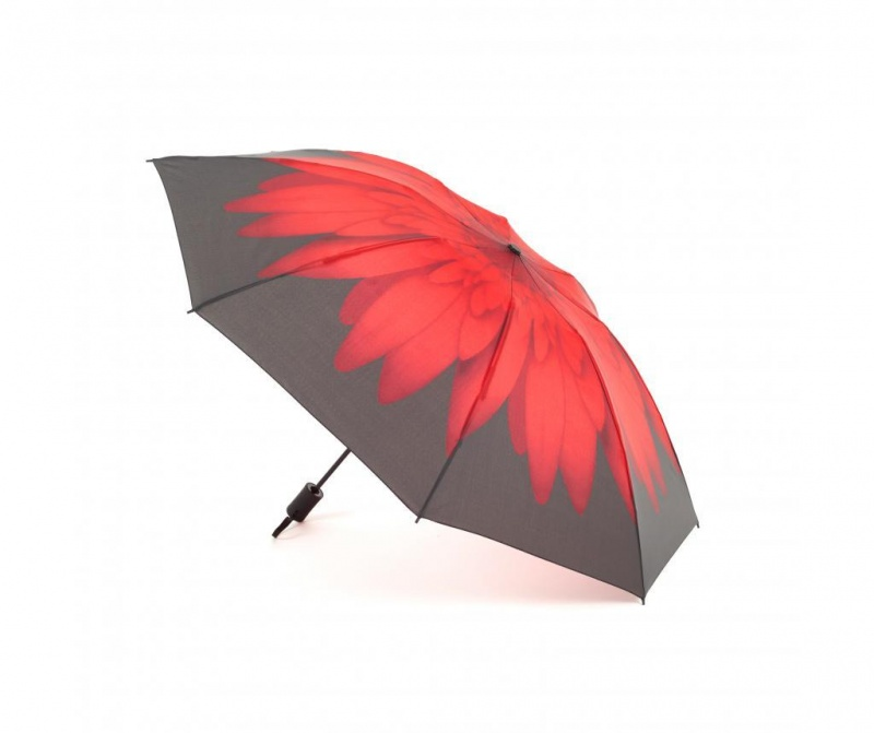 Dežnik Reverse Daisy Red