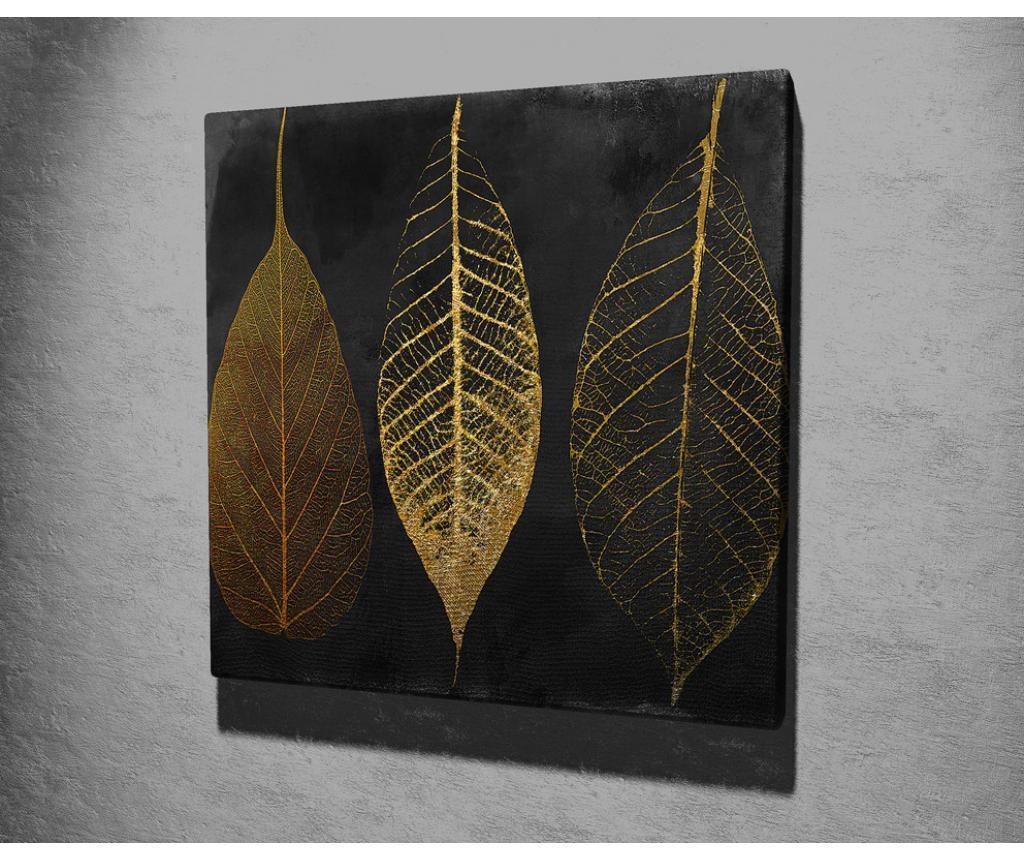Tablou 45x45 cm - Majestic, Multicolor