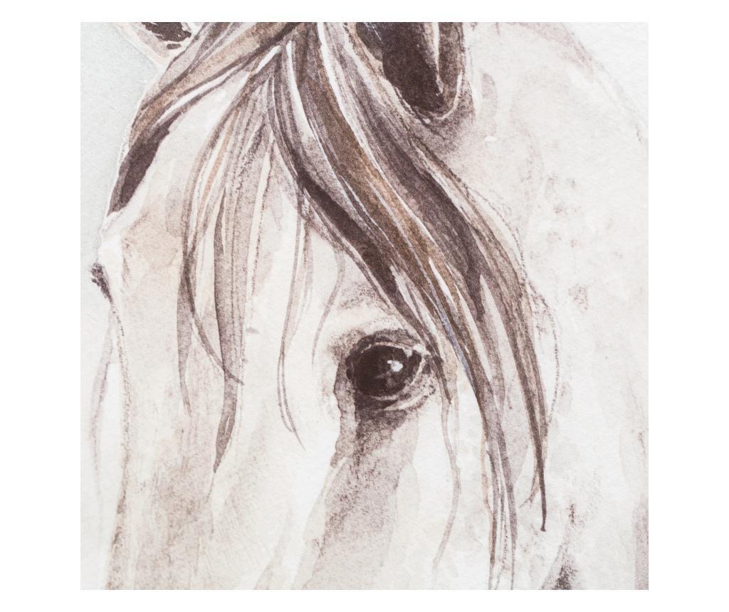 Horse Kép 80x120 cm