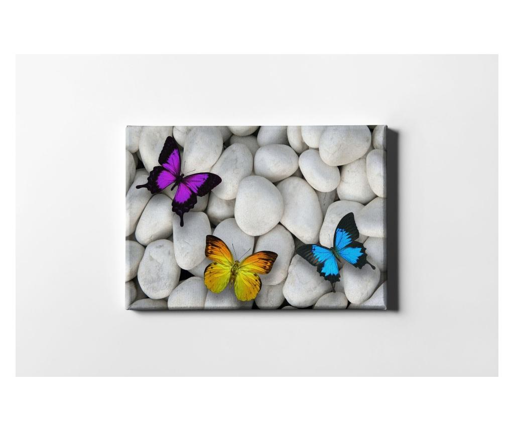 Tablou White Stones And Butterflies 40x60 cm - CASBERG, Multicolor