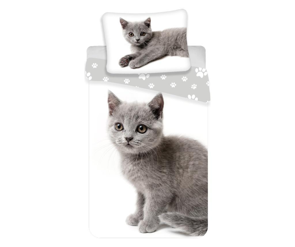 Set de pat Single Ranforce Kitten Grey - Sweet home, Multicolor