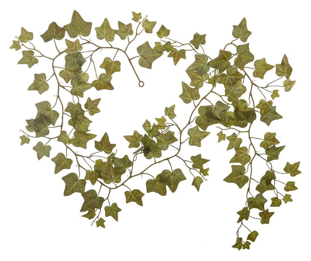 Ghirlanda de plante - Dino Bianchi, Verde