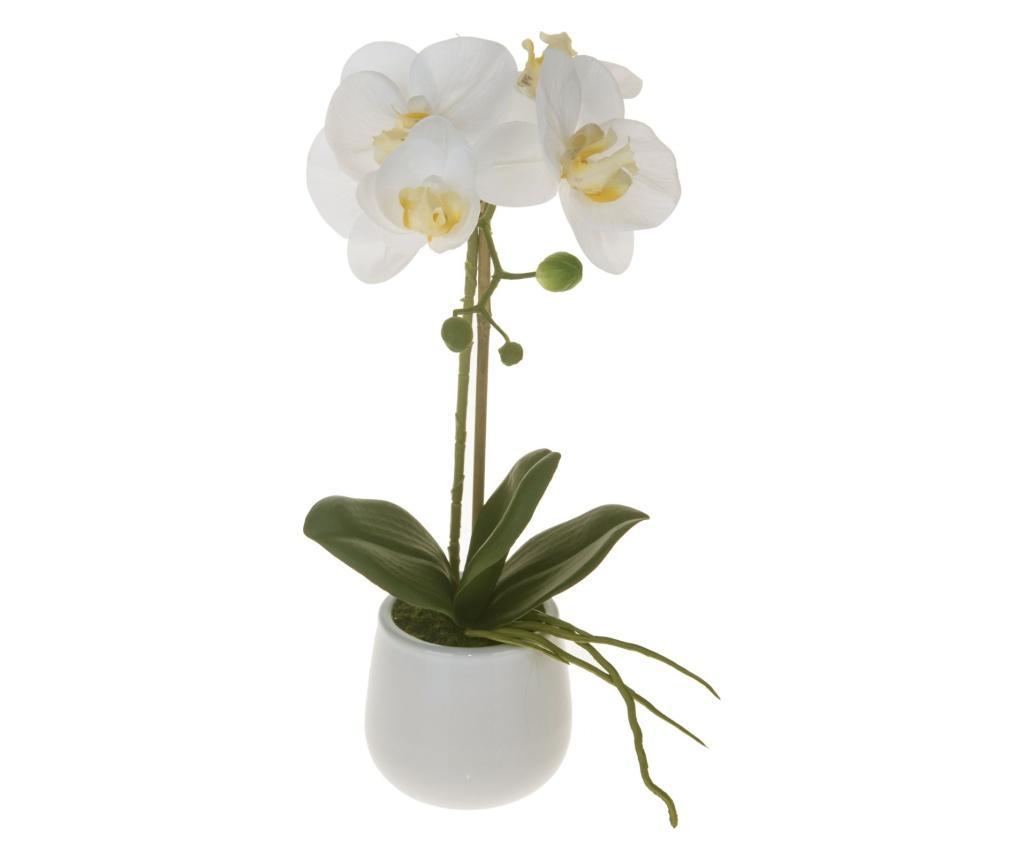 Floare artificiala - Dino Bianchi, Alb